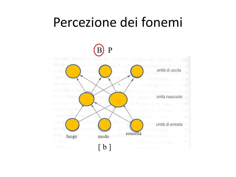 Percezione dei fonemi B P sonorità luogo modo [ b ]